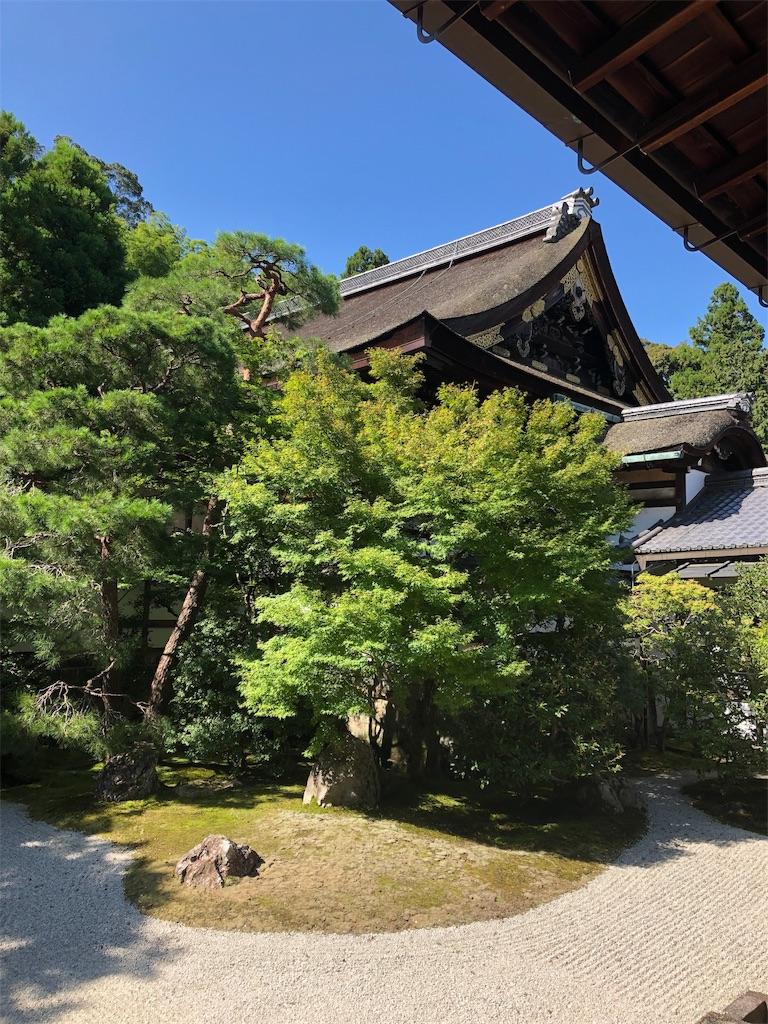 f:id:kamibutsuyoku:20190916114819j:image