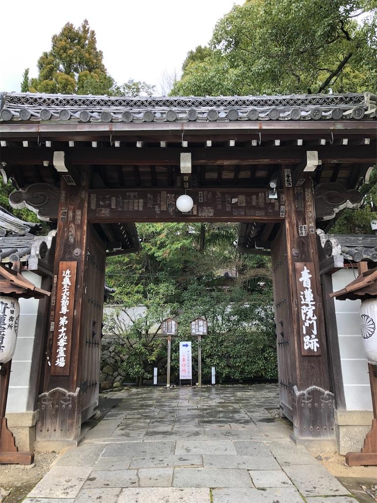 f:id:kamibutsuyoku:20200312115314j:image