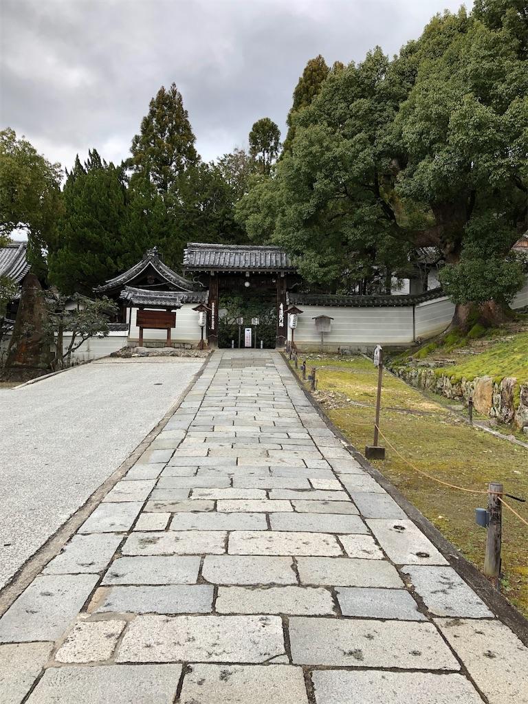 f:id:kamibutsuyoku:20200314174847j:image
