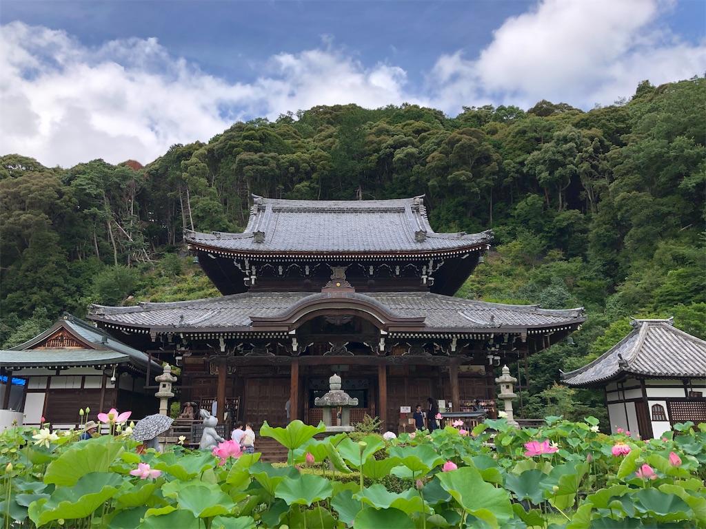 f:id:kamibutsuyoku:20200716074036j:image