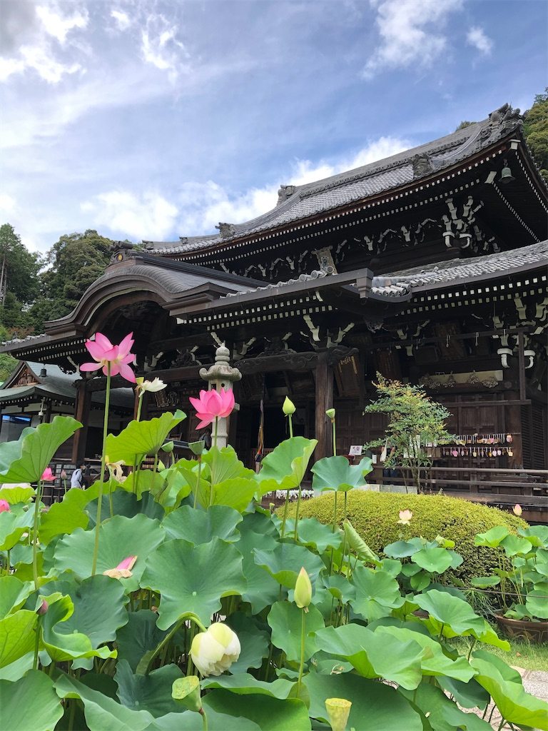 f:id:kamibutsuyoku:20200720125839j:image