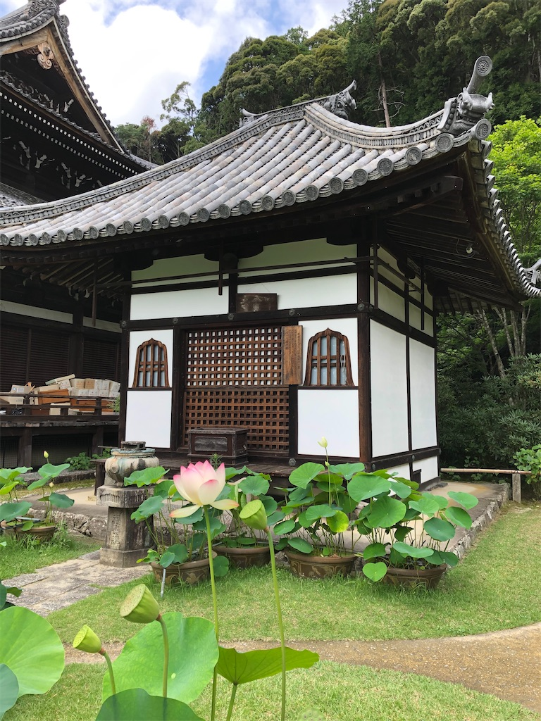 f:id:kamibutsuyoku:20200722071450j:image
