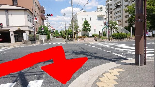 f:id:kamigami000bond:20190625134245j:image