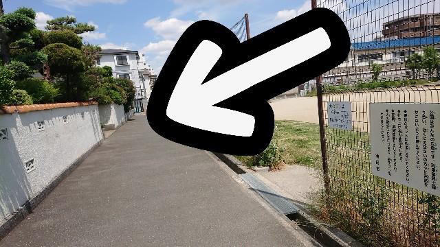 f:id:kamigami000bond:20190625134811j:image