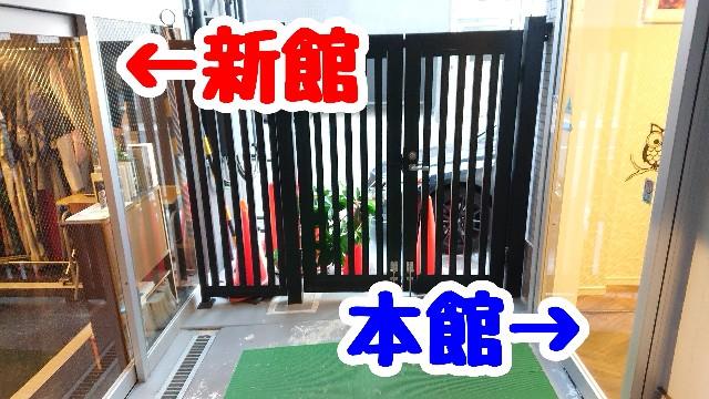 f:id:kamigami000bond:20191121183149j:image