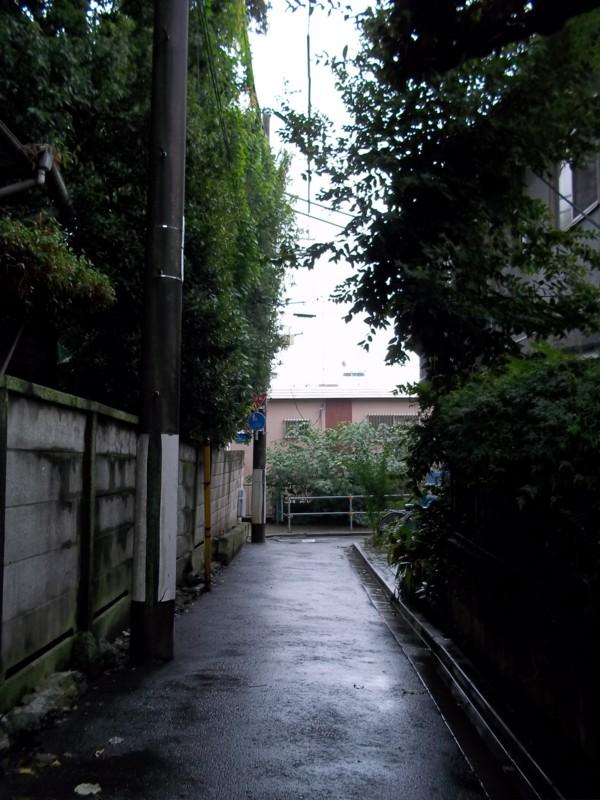 f:id:kamihaku:20100930132606j:image