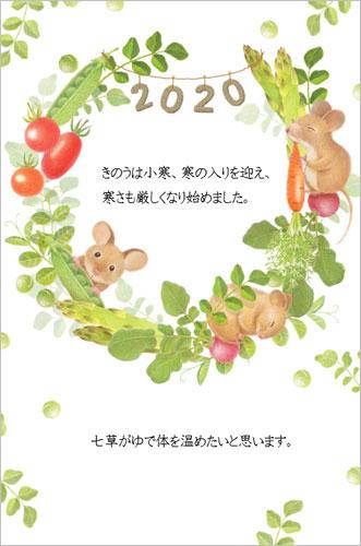 f:id:kamihiko-kirara:20200107050826j:plain