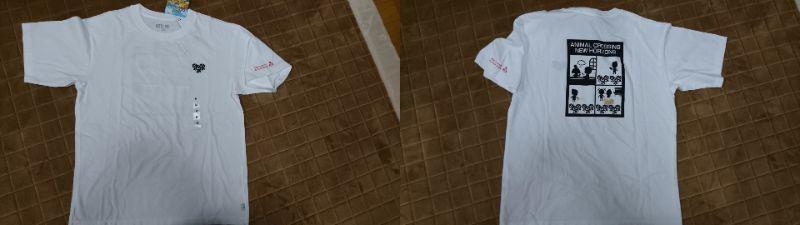 f:id:kamihikouki-tondeke:20210429222126j:plain