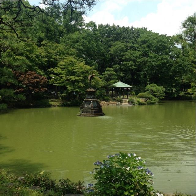 f:id:kamikami3594:20150625221300j:image