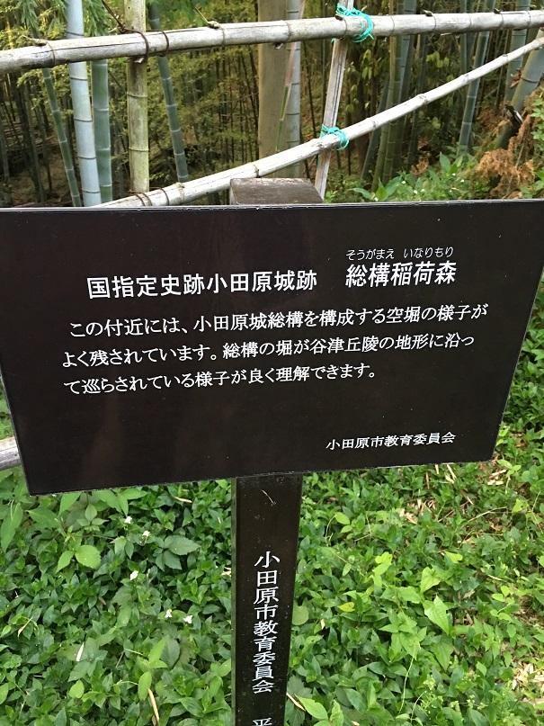 f:id:kamikami3594:20160521175807j:plain