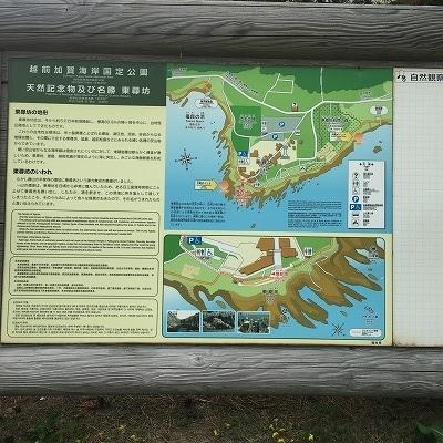 f:id:kamikami3594:20180520202700j:plain