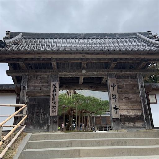 f:id:kamikami3594:20200328190046j:image