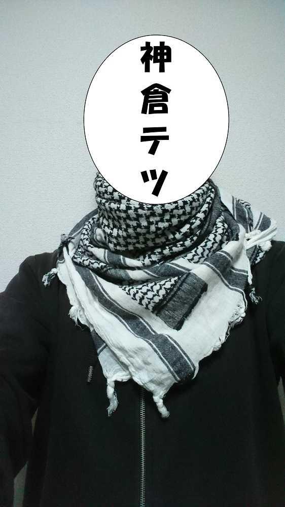 f:id:kamikura102:20181228183551j:plain