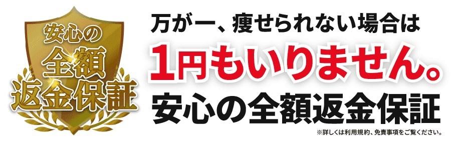f:id:kaminarimon2015:20160802094843j:plain