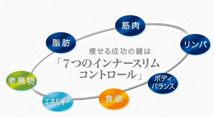 f:id:kaminarimon2015:20170124100002j:plain
