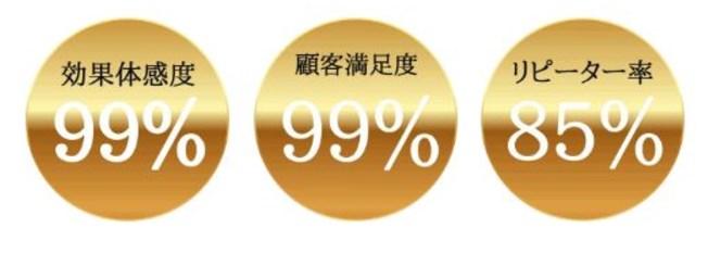 f:id:kaminarimon2015:20170420120457j:plain
