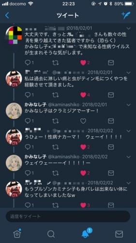 f:id:kaminashiko:20180224194708j:plain