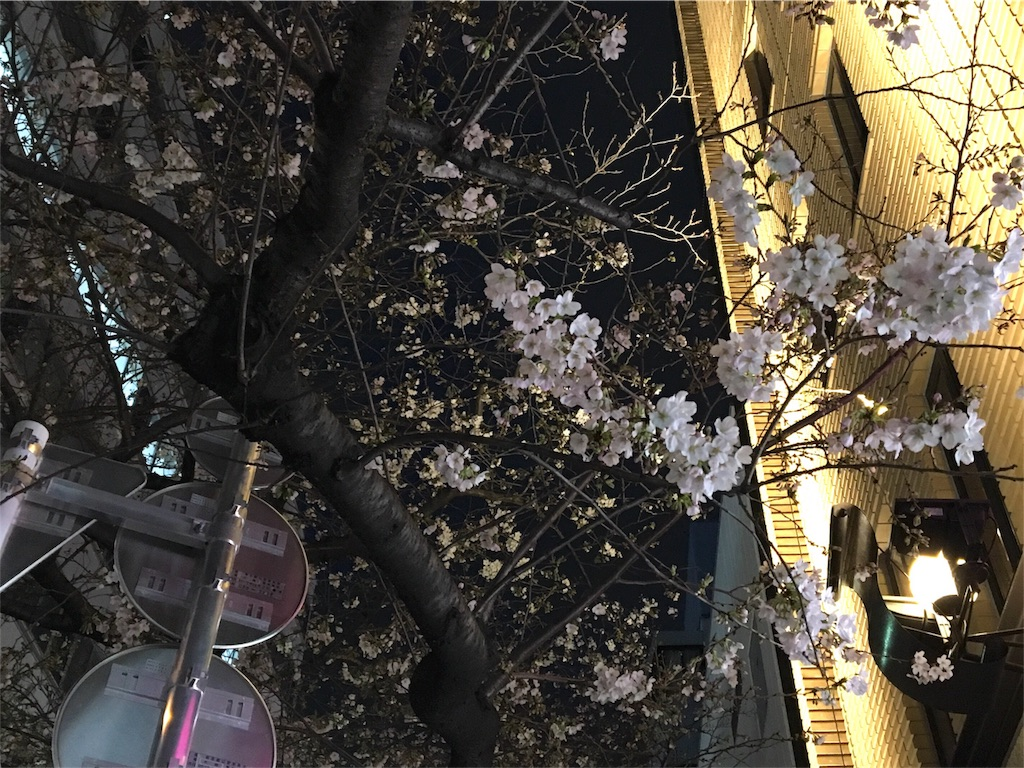 f:id:kaminashiko:20180326083736j:image