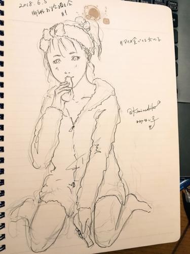 f:id:kaminashiko:20180606014017j:plain