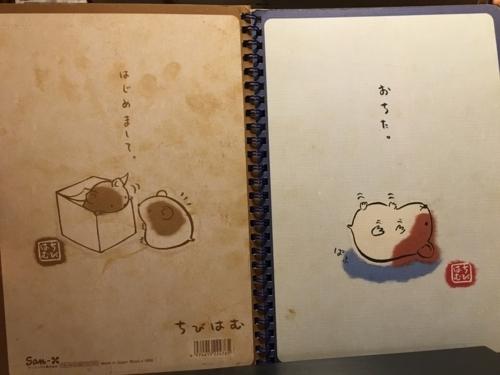 f:id:kaminashiko:20180606014022j:plain