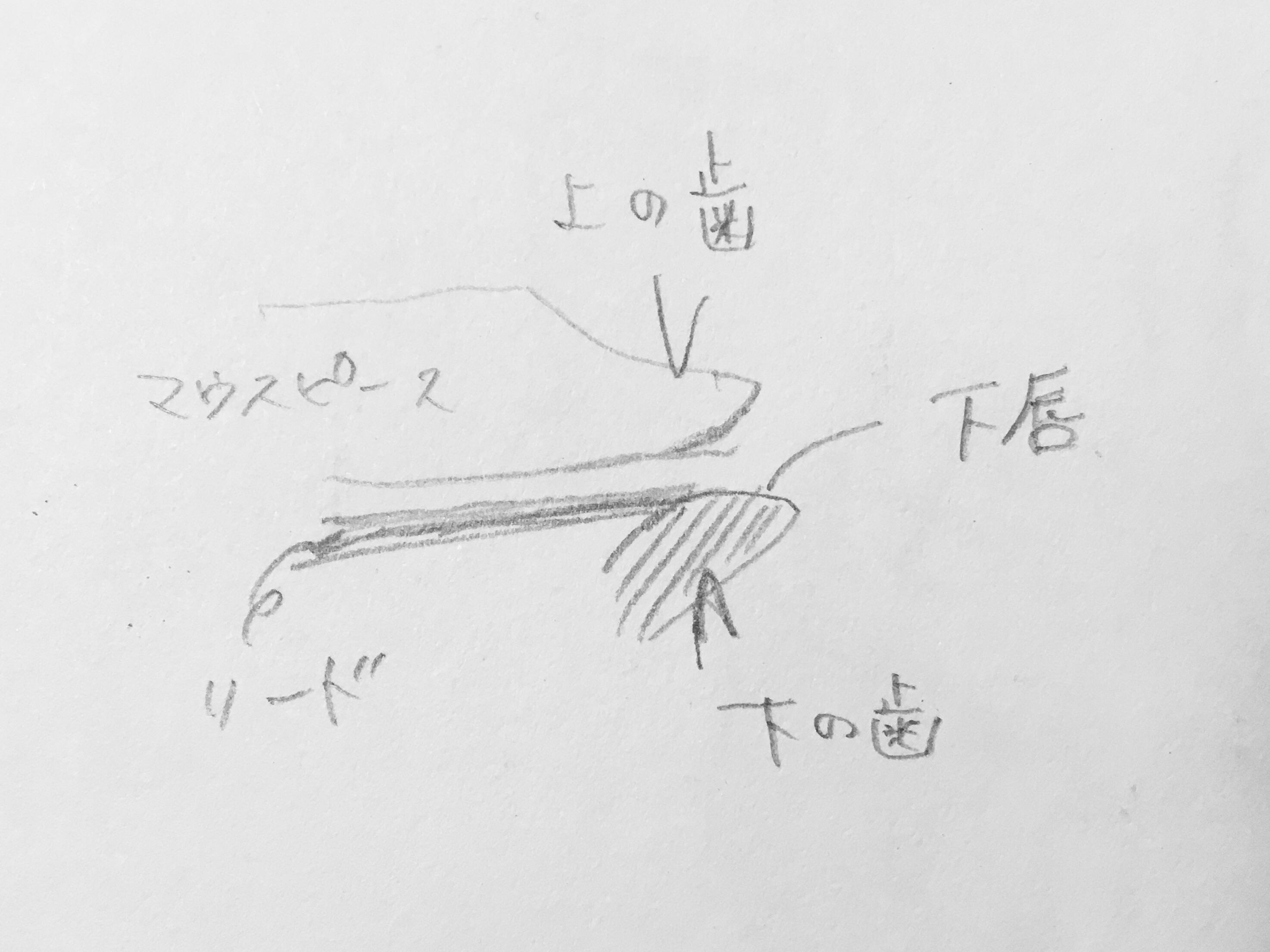 f:id:kaminashiko:20180714091622j:plain