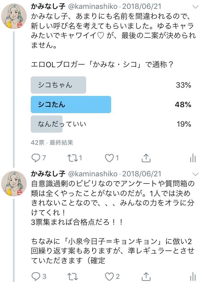 f:id:kaminashiko:20180716131209j:plain