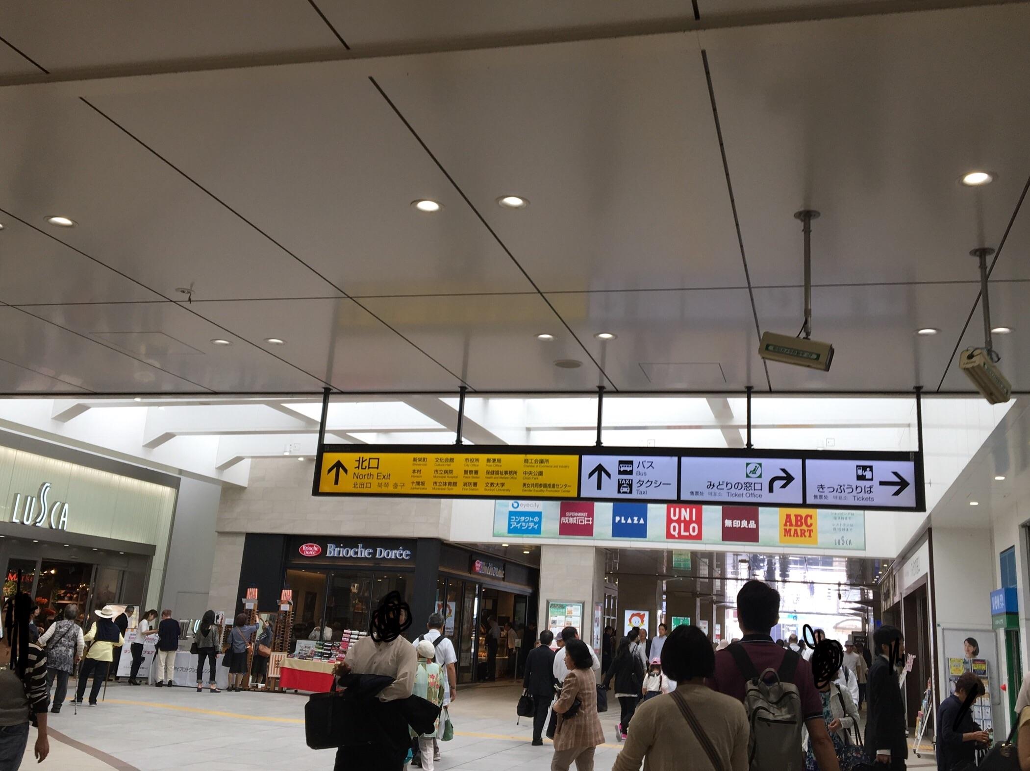 f:id:kaminashiko:20180716172034j:plain