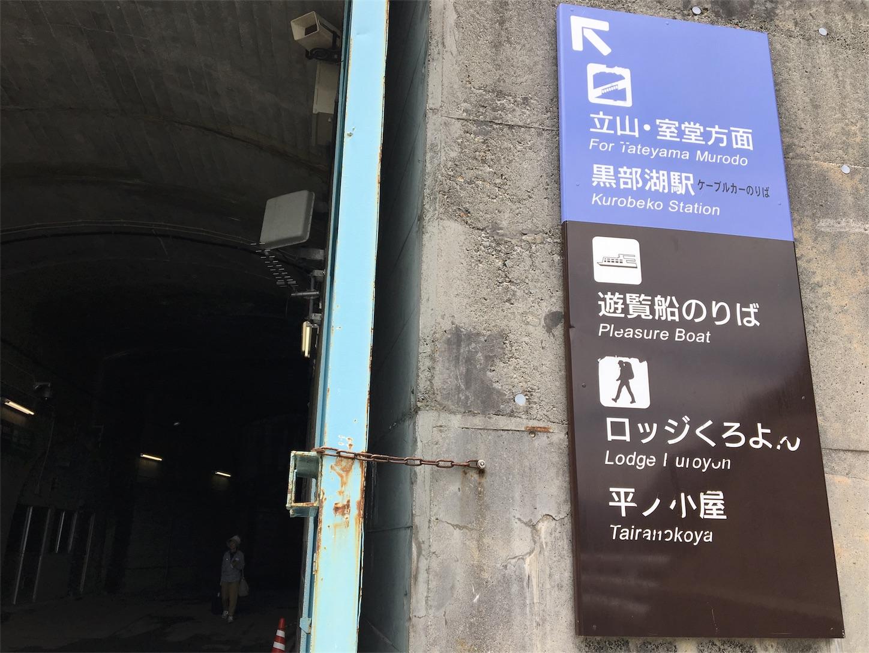 f:id:kaminashiko:20180805175245j:plain