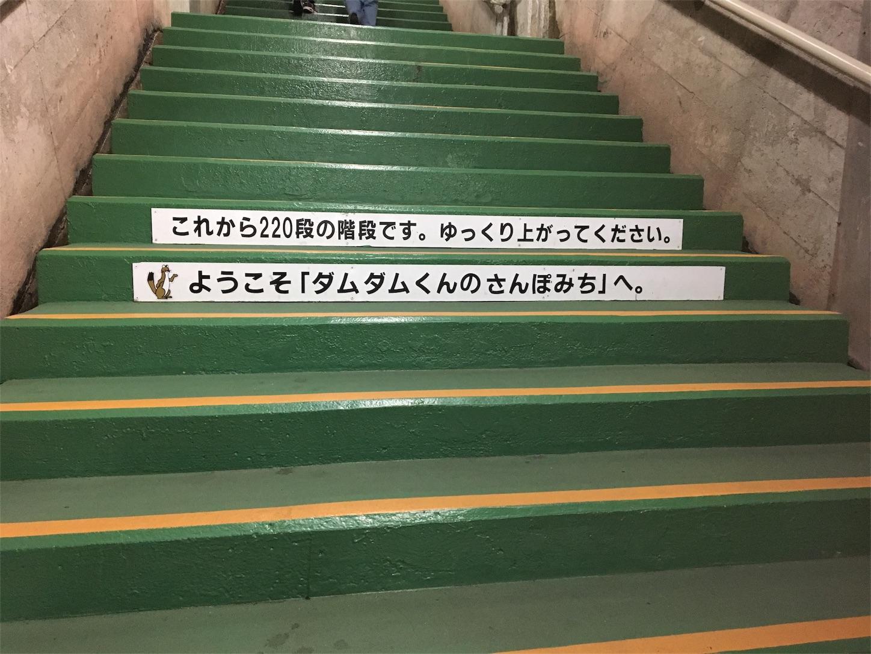 f:id:kaminashiko:20180805175536j:plain