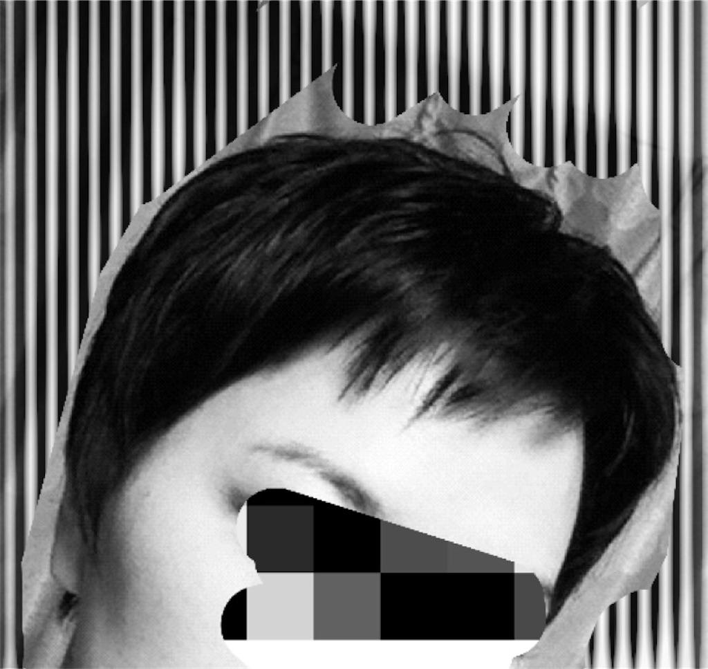 f:id:kaminashiko:20181127203515j:plain