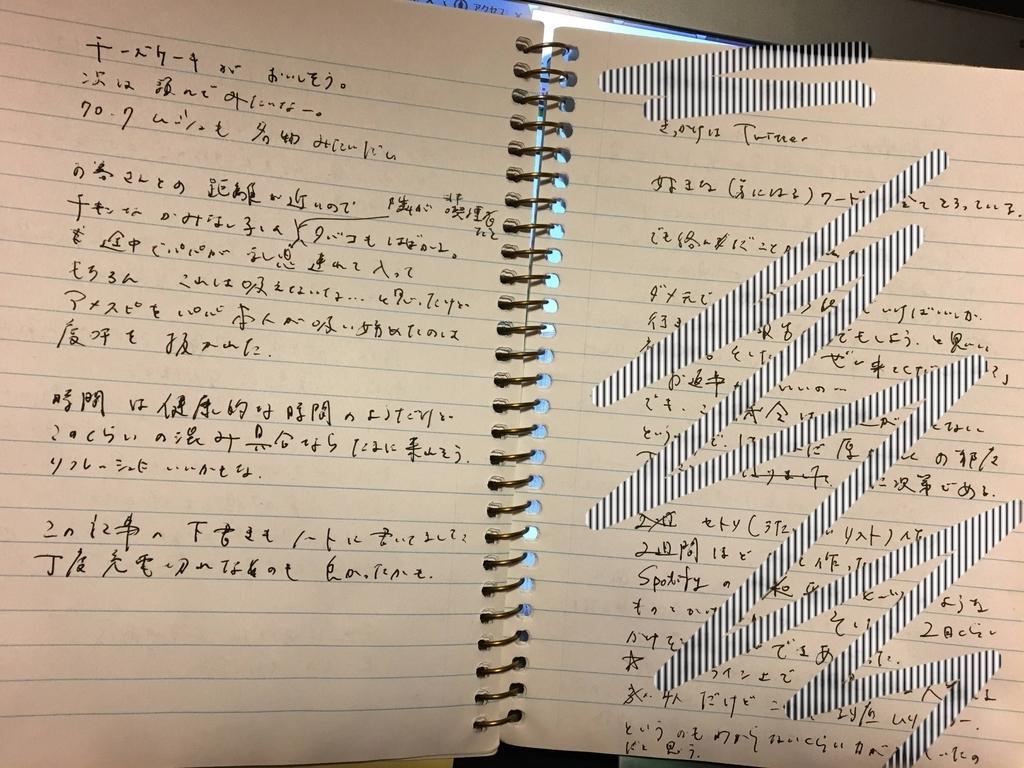 f:id:kaminashiko:20181231232249j:plain
