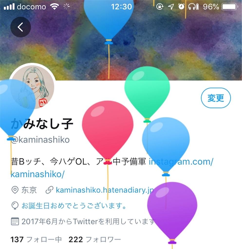 f:id:kaminashiko:20190522130259j:image