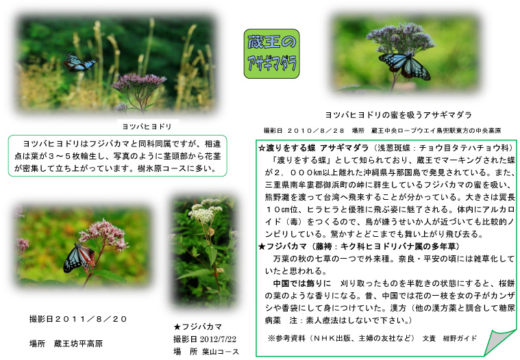 f:id:kaminoyamaspa:20120725152132j:image:w360