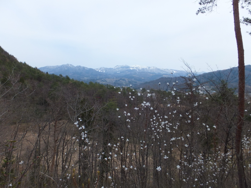 f:id:kaminoyamaspa:20140420121014j:image