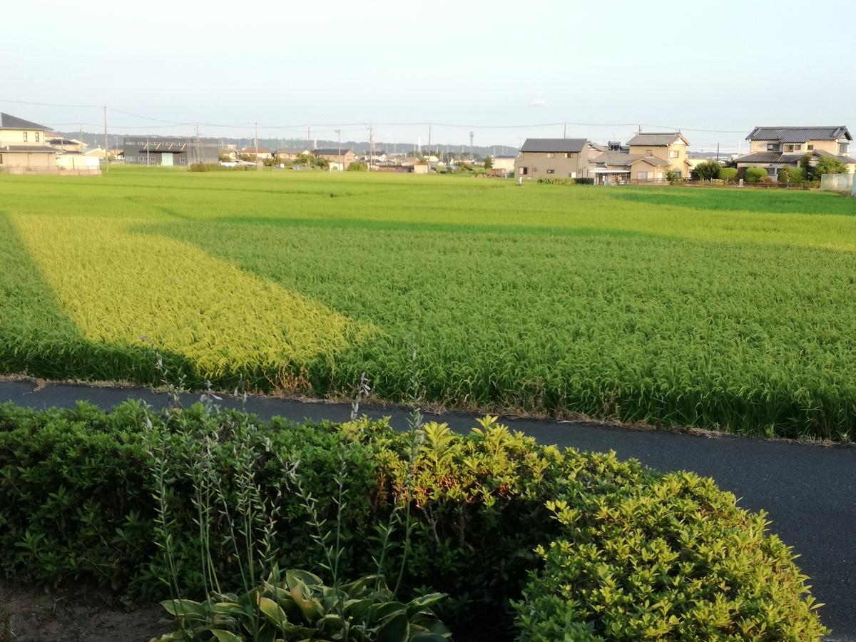 f:id:kamiokanokyoukai:20190803180226j:plain