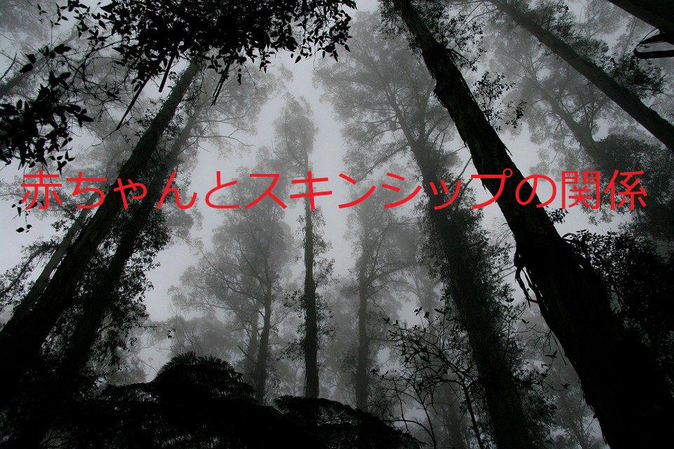 f:id:kamishioya:20201015212017p:plain