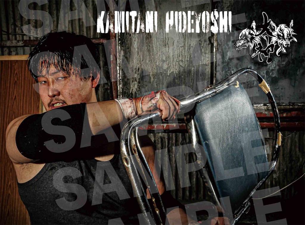 f:id:kamitanix:20200610210311j:image