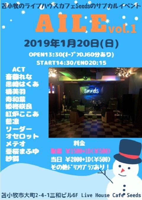 f:id:kamito620:20190115001137j:plain