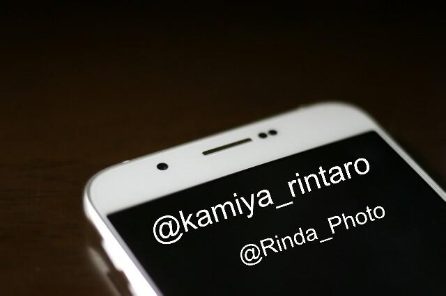 f:id:kamiyarintaro:20170205090213j:image