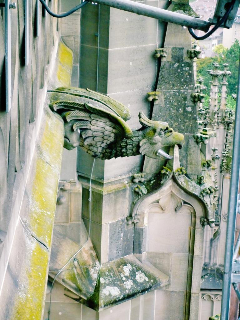 f:id:kamokamokamo:20150727003232j:plain