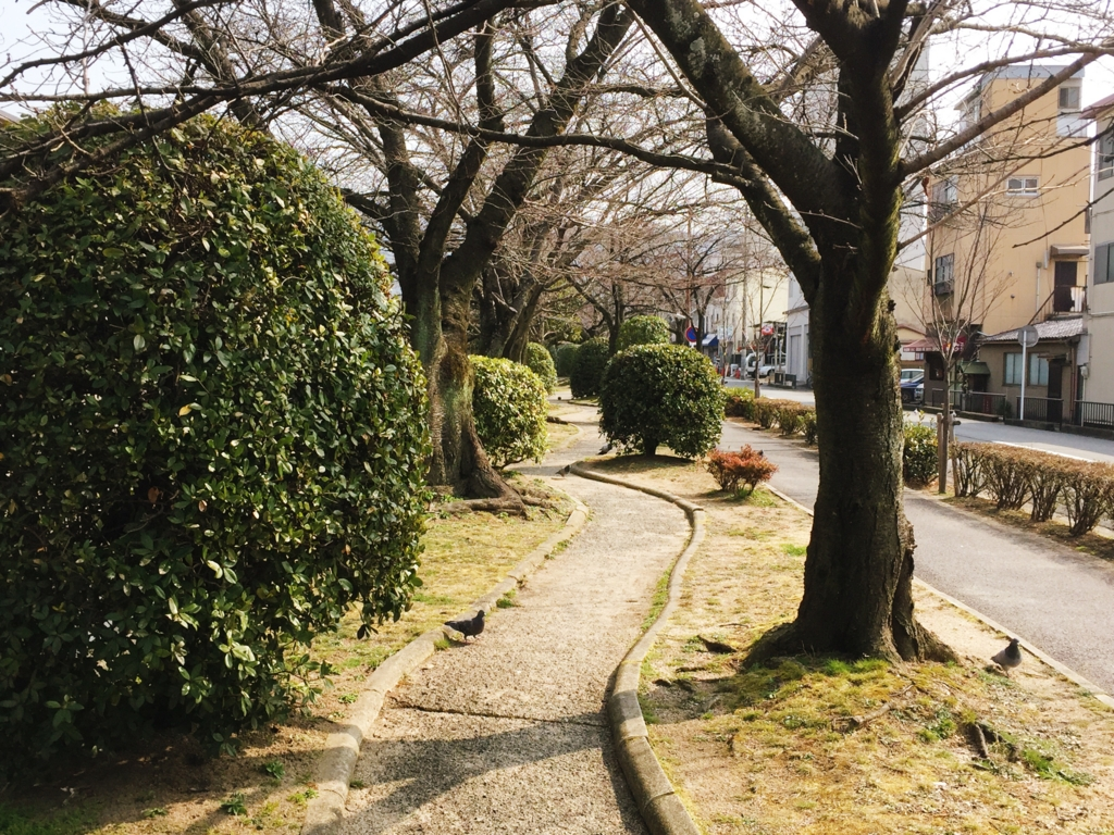 f:id:kamokamokamo:20160309075203j:plain