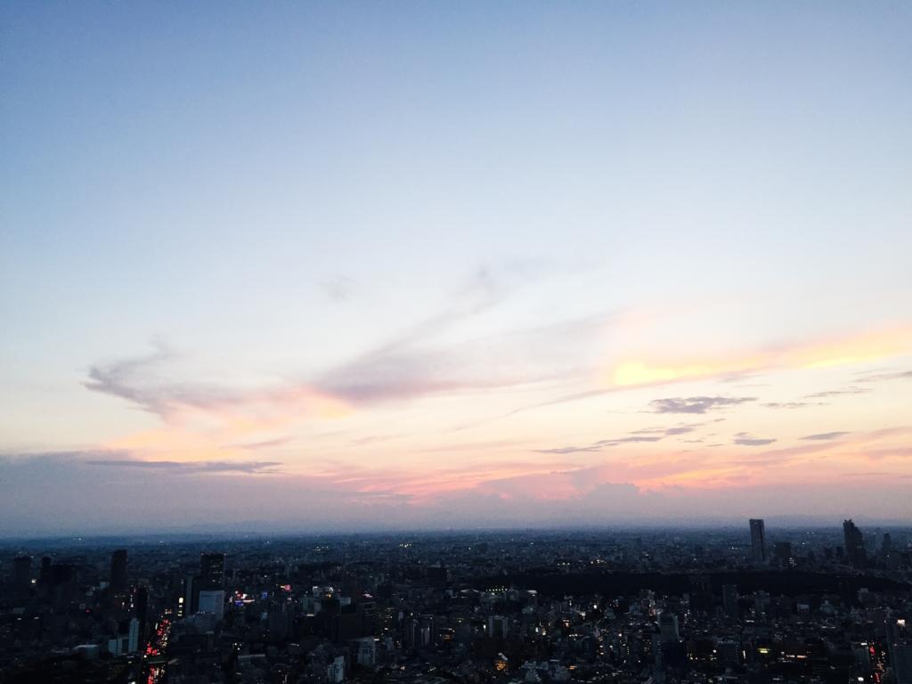 f:id:kamokamokamo:20160806092847j:plain