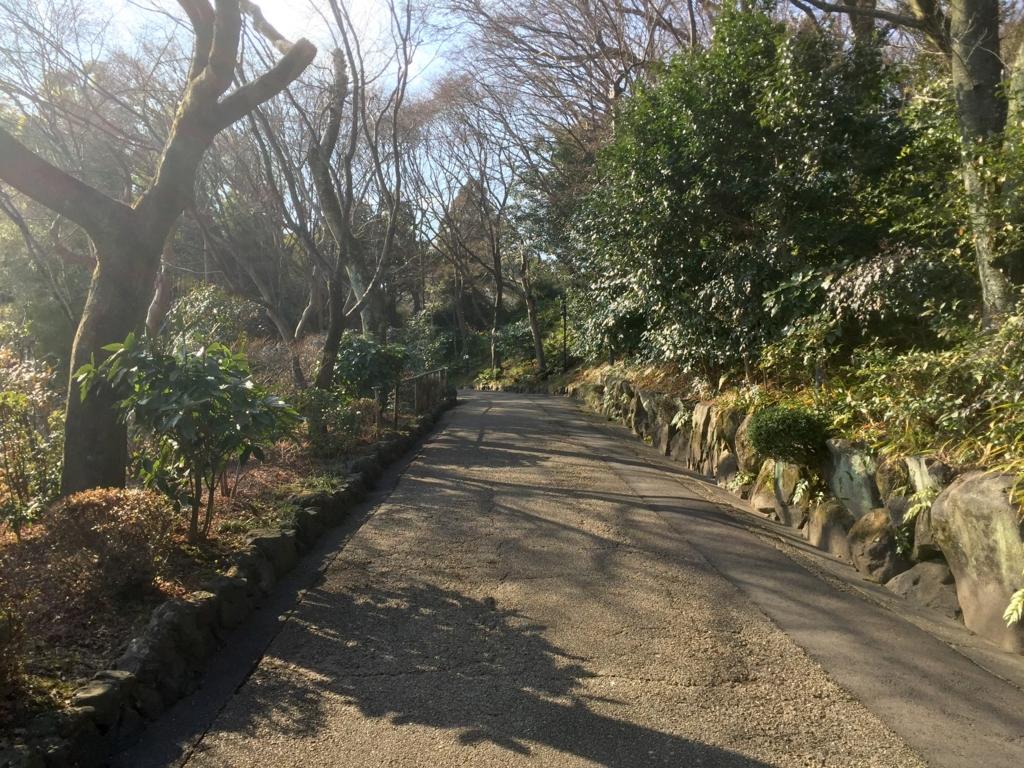 f:id:kamokamokamo:20170205175557j:plain