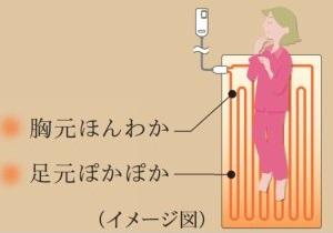 f:id:kamomako:20171116182212p:plain