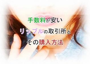 f:id:kamomako:20180222192729j:plain