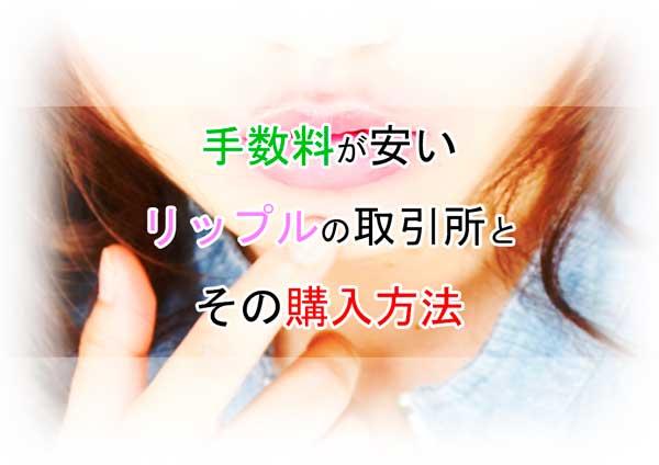 f:id:kamomako:20180222194750j:plain