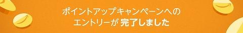 f:id:kamomako:20180601090354j:plain