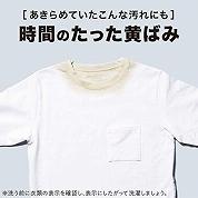 f:id:kamomako:20181113122444j:plain