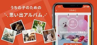 PECO 動物ニュースアプリ