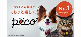 PECO 動物迷子アプリ